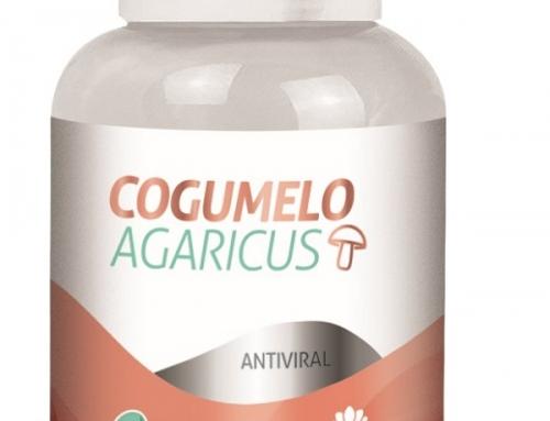 Cogumelo Agaricus